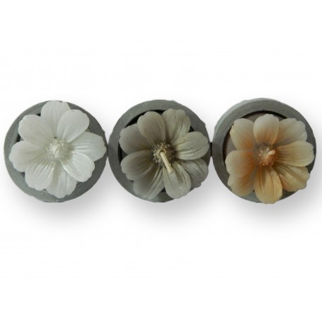 Lot de 3 bougies home marguerite